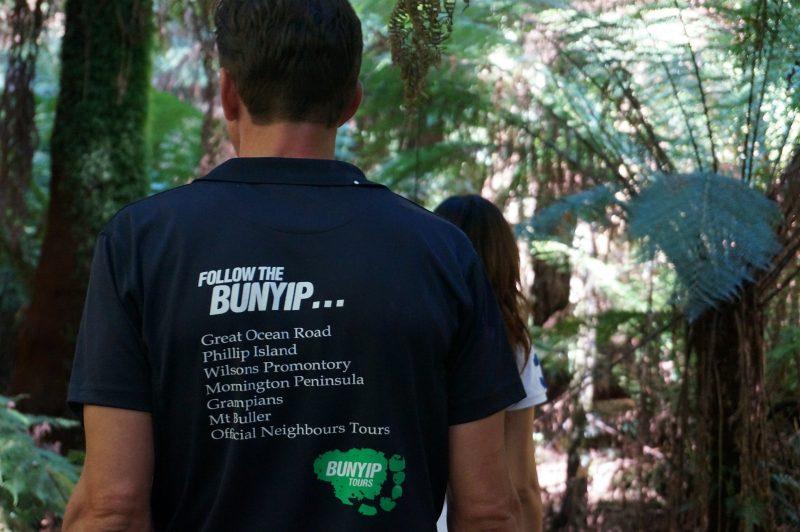 Bunyip guide