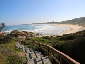 Cape Conran Coastal Park | Attraction Tour | Cape Conran