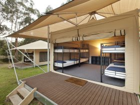 Glamping Village Bunk Accommodation