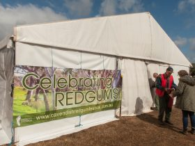 The Celebrating Red Gums Forum Marquee