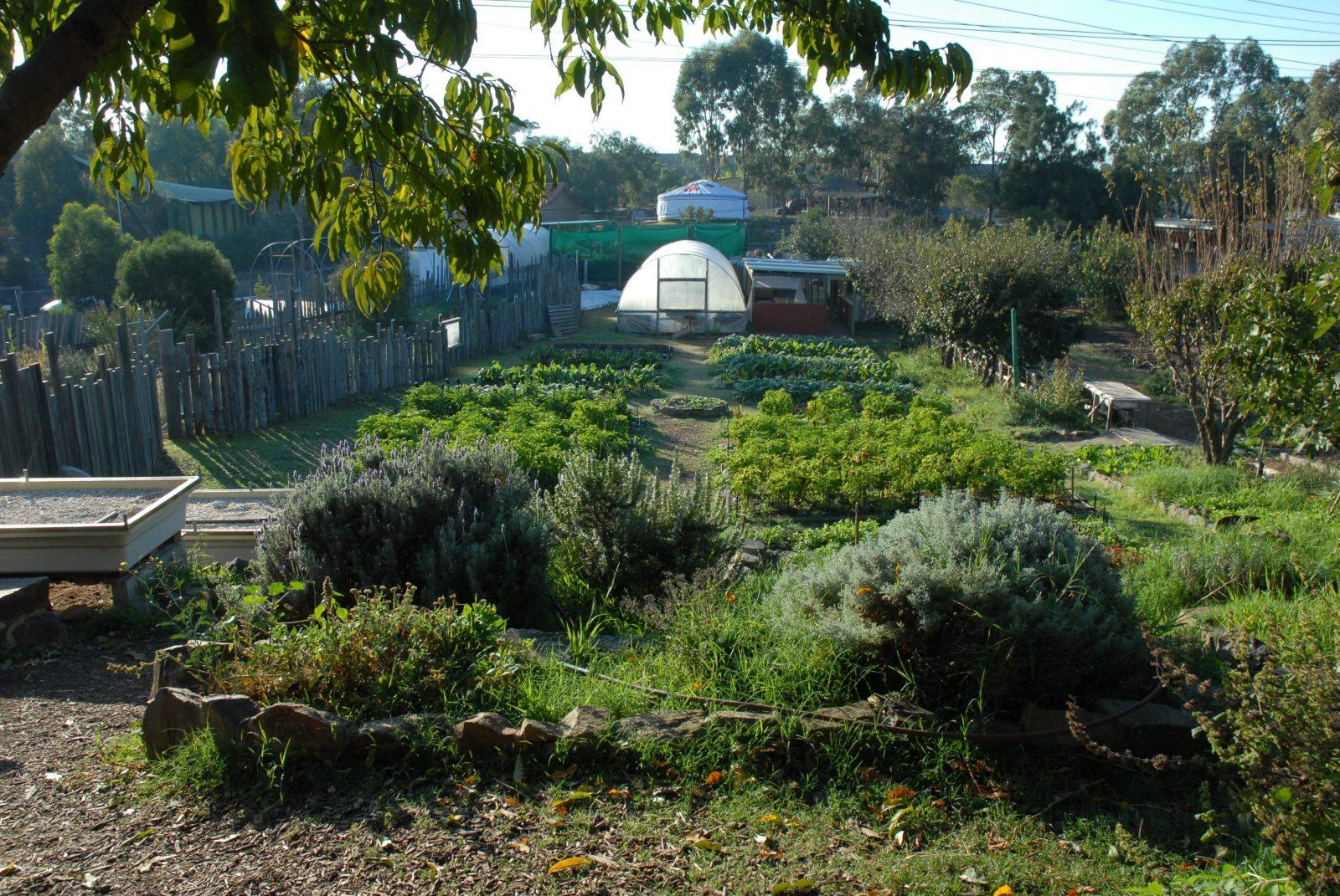 Honey Lane Market Garden