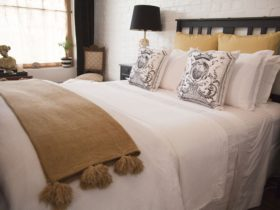 Chiltern Cottage and Indigo Suite Comfort