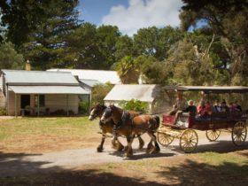 Churchill Island Heritage Farm - Wagon Rides
