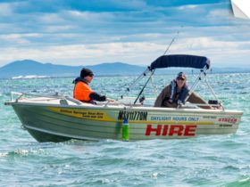 Clifton Springs Boat Hire, Fishing the Bay