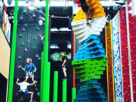 Clip 'n Climb Williamstown