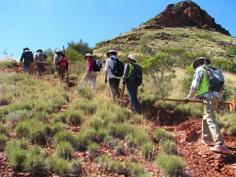Outback Volunteers