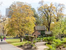 Cooks' Cottage set amongst the scenic Fitzroy Gardens on a winter's day