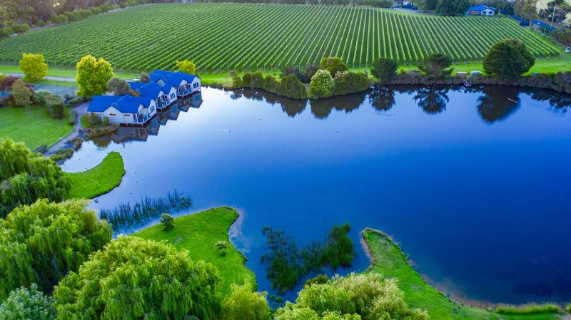 Crittenden Estate vineyard and winery