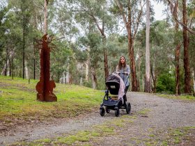 Woman pushing pram along track at Currawong Bush Park