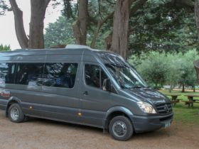 Travel in luxury Mercedes mini coaches, with comfortable seats, water, large windows.