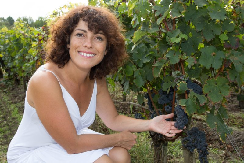 Walk the vines and learn how the wine is made.