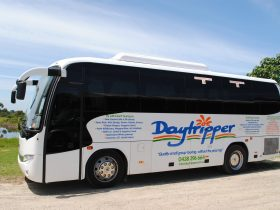 Daytripper Tour bus
