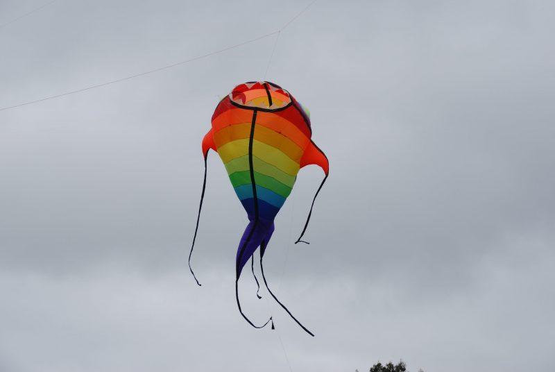 Dean Kite Festival
