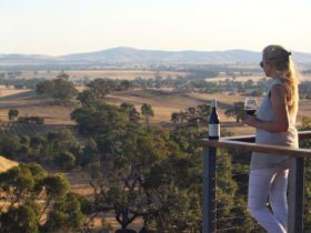The view from Dogrock Winery Cellar Door