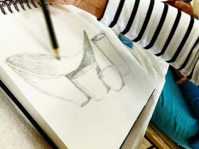 Drawing for Beginners at ClayMotion, Ballarat