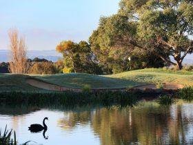 Eagle Ridge Golf Course, Mornington Peninsula