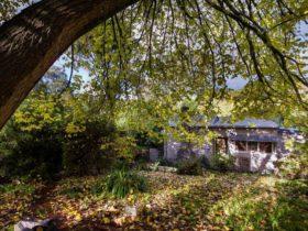 Elm Veil Cottage - Front of Cottage
