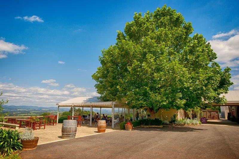 Elmswood Estate marquee area - Yarra Valley Vineyard