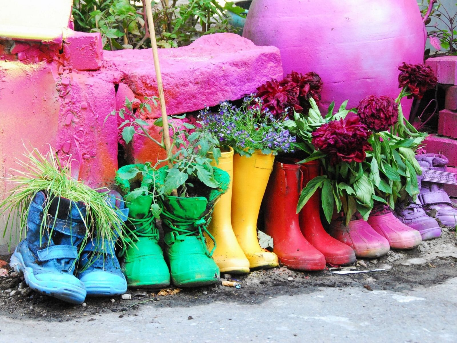 Coloured shoes being used as planters