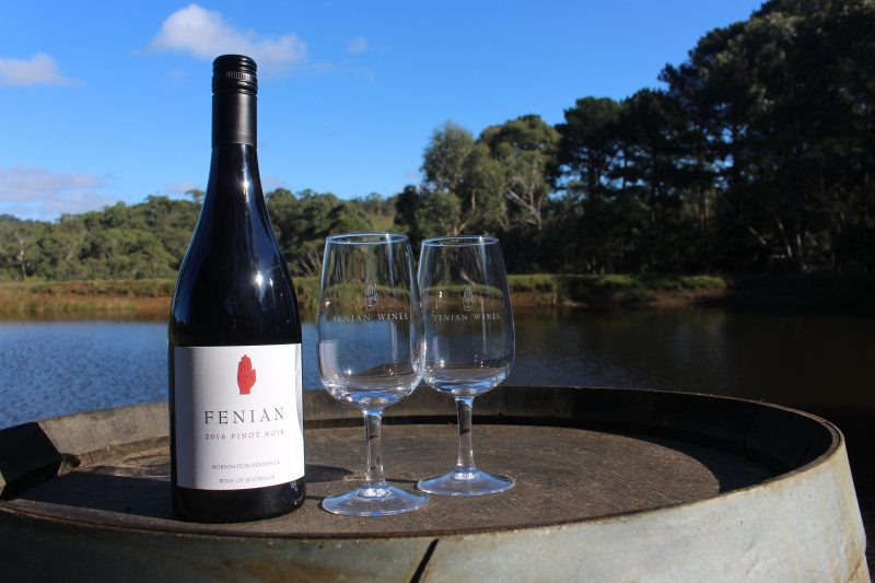Fenian Wines outlook over the water