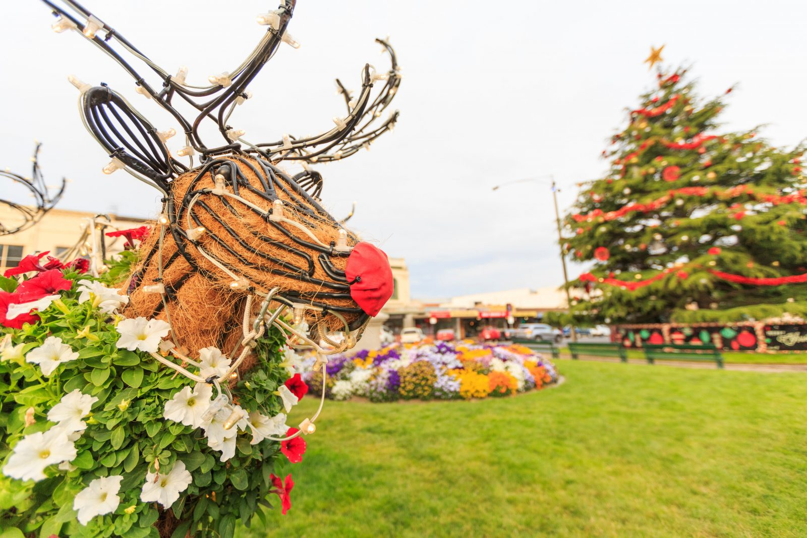 Floral Reindeer