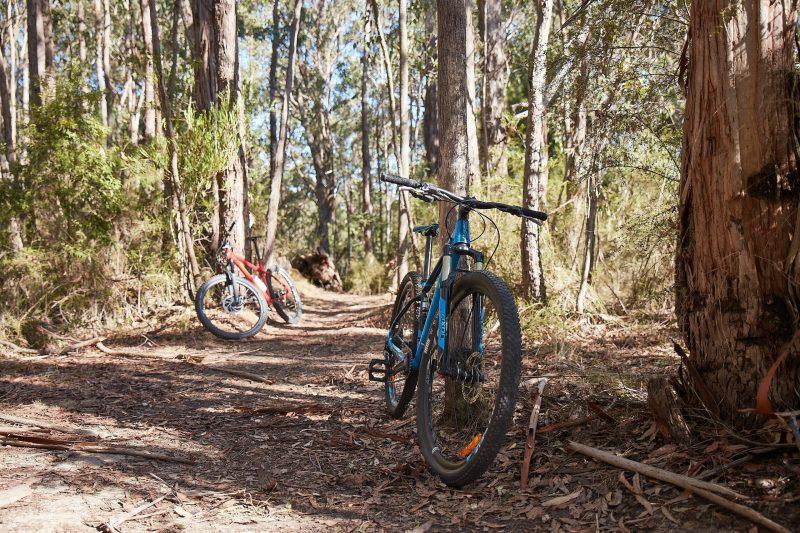Forrest Hire Bikes