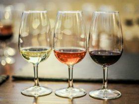 wine queenscliff