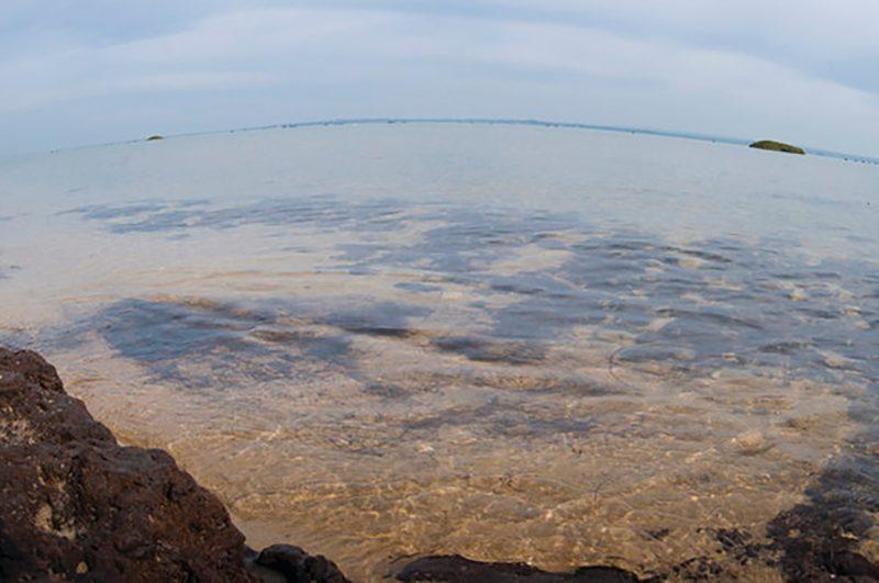 French Island Marine National Park