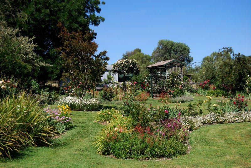 Collins Garden