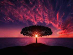 Geelong Drop-in Meditation