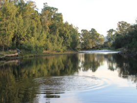 King River at Gentle Annie