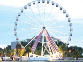 Giant Ferris Wheel - Hi Lite Amusements