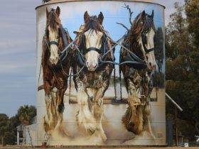 North East Victoria Silo Art