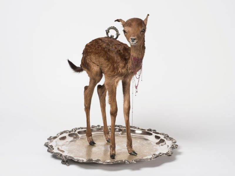 Julia deVille, Sentience 2012, stillborn deer, rubies, pear-cut garnet, white gold, sterling silver,
