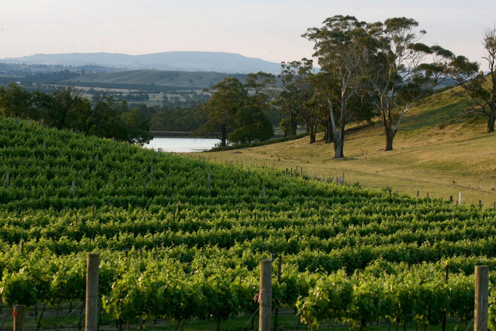 Granite Hills Winery
