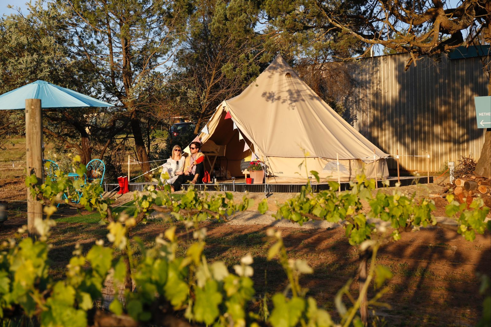 Grapevine Glamping - exterior