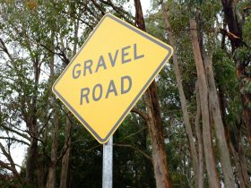 Guided Gravel Loops from Beechworth
