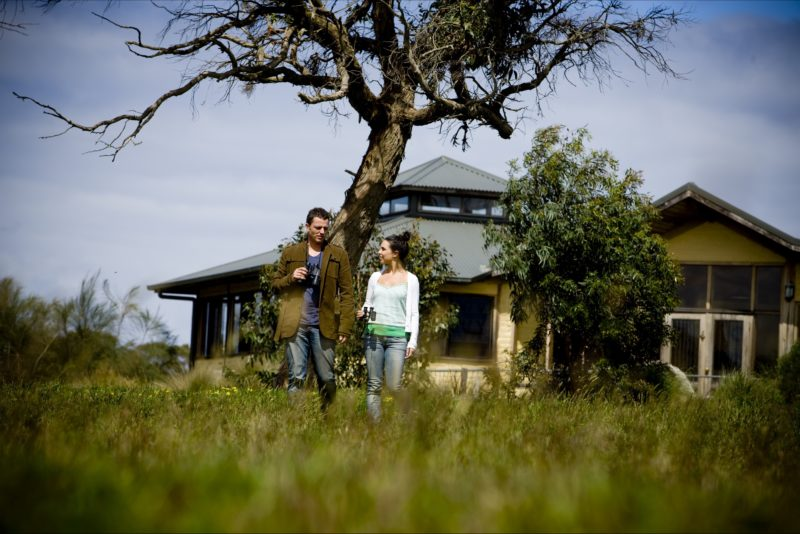 Wander at the Great Ocean Ecolodge