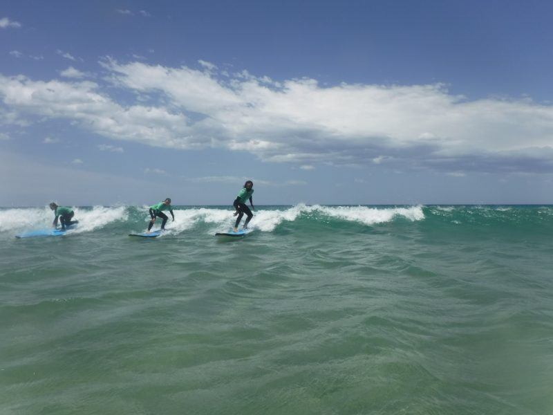 Guests surfing