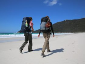 Hiking the Great Prom Walk at Wilsons Promontory, Gippsland, Victoria, Australia