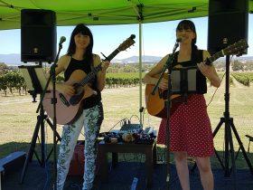 Little Sister performing at Greenstone Vineyards