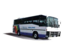 Gull Airport Service