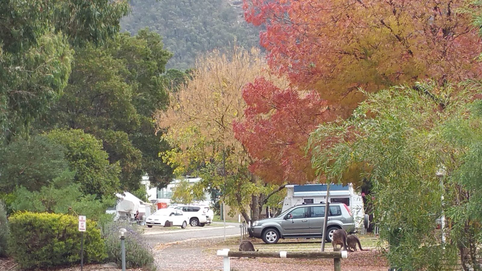 Great Camping Sites