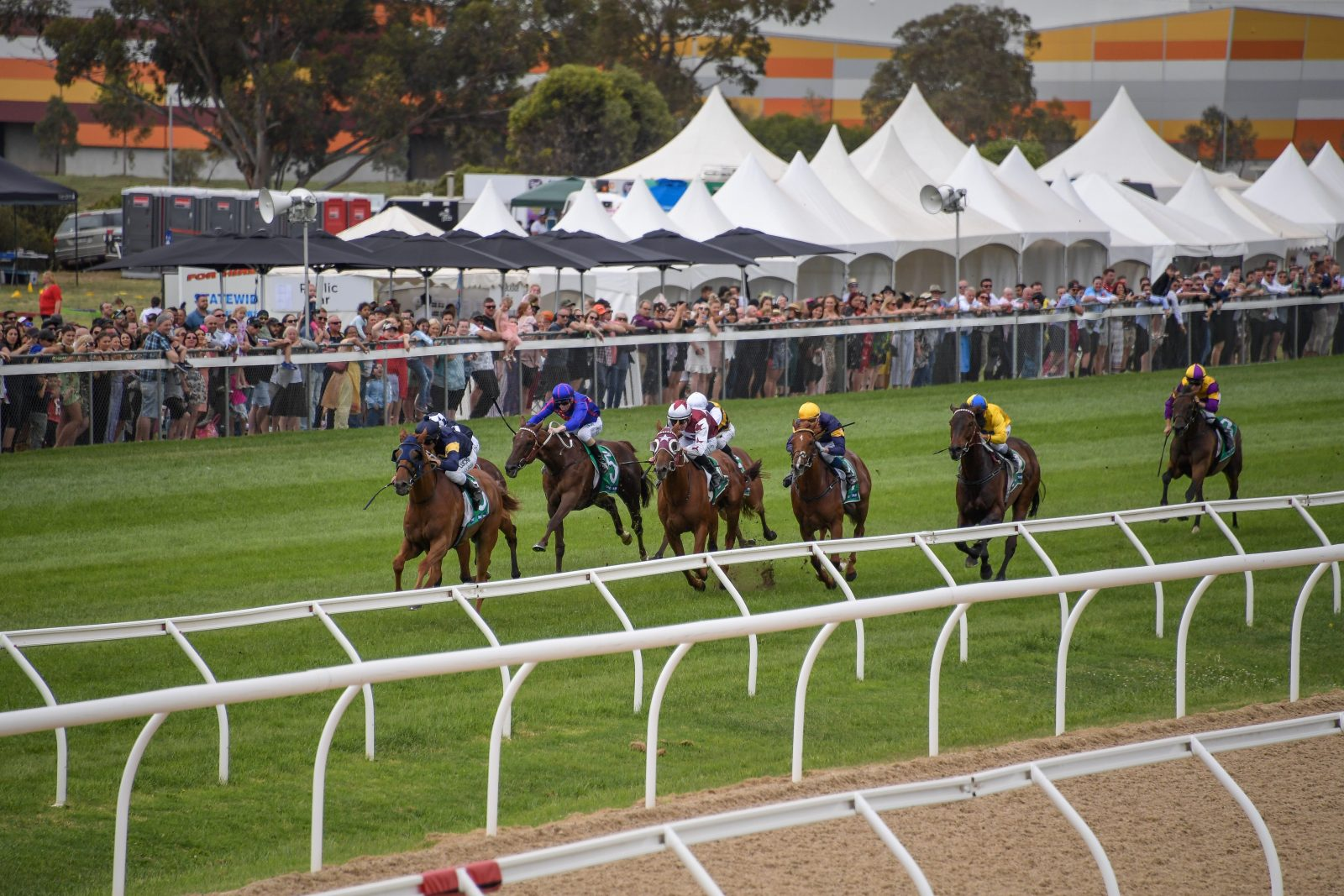 Werribee Cup Day