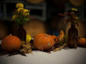 Harvest Picnic at Sedona Estate