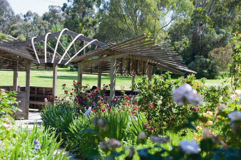 Gardens at Heide Museum of Modern Art