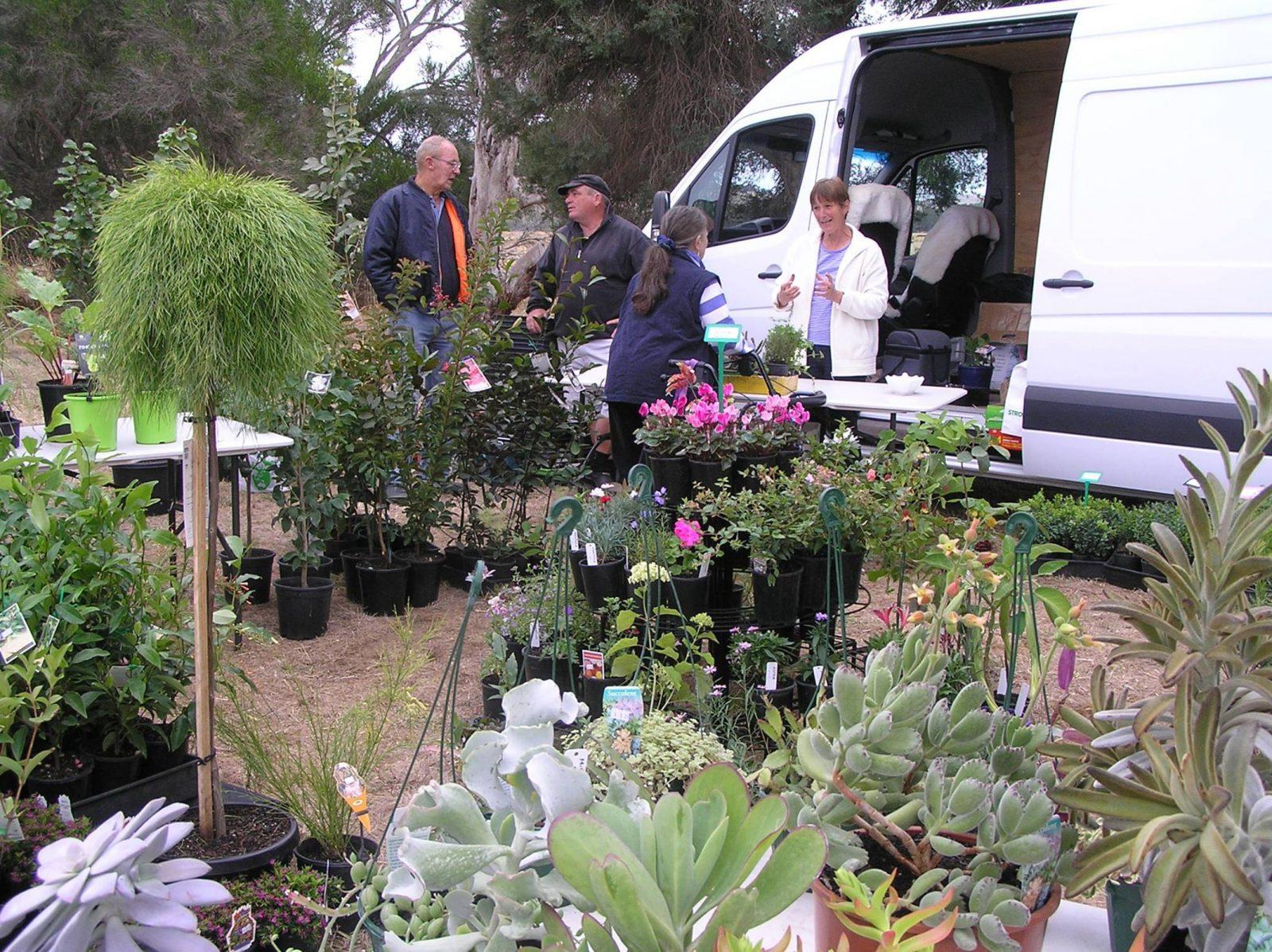 Henty Annual Market plants