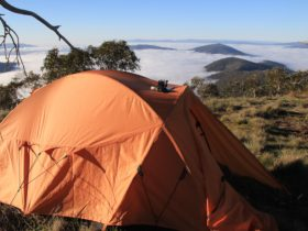 Waking up above the clouds in the Victorian High Country.