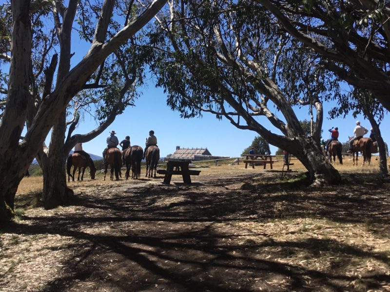 High Country Scenic Tours - Craig's Hut