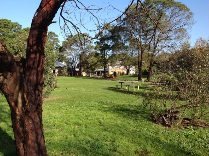 Beautiful grounds for picnics